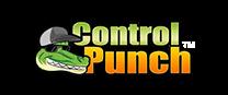 ctrl_punch